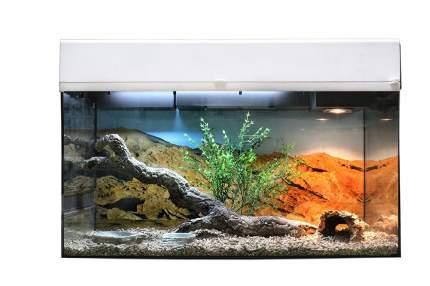 Террариум LUCKY REPTILE Стартовый комплект для Бородатых Агам, белый, 80 x 52 x 40 см