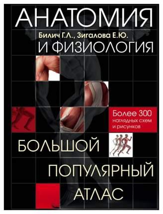 Анатомия и Физиология, Большой популярный Атлас