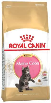 Сухой корм для котят ROYAL CANIN Maine Coon Kitten, мейн-кун, птица, 4кг