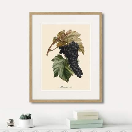 Коллекция Juicy fruit lithography №2 (из 2-х картин), Картины в Квартиру