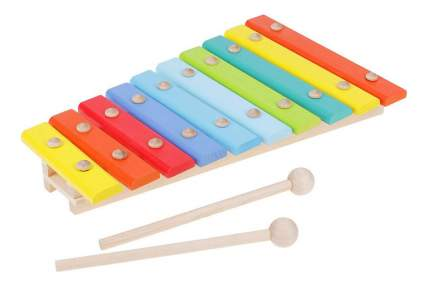 Ксилофон Aalatoys 10 нот окрашенный
