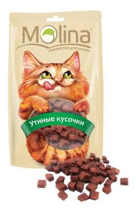Лакомство для кошек Molina Утиные кусочки, 80г