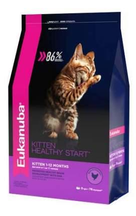 Сухой корм для котят Eukanuba Kitten Healthy Start, курица, 5кг