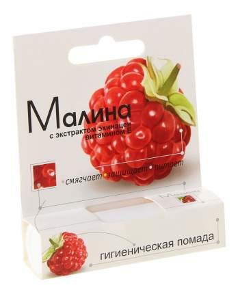 Гигиеническая помада АВАНТА Малина 2,8 г