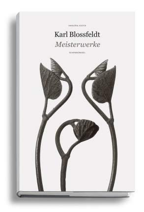 Книга Karl Blossfeldt: Masterworks