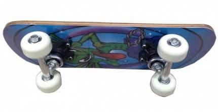 Скейтборд Action PWS-420 17х5
