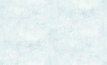 Обои виниловые флизелиновые BN International Hawaii 50467