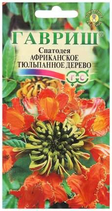 Семена Спатодея Африканское тюльпанное дерево, 0,05 г Гавриш