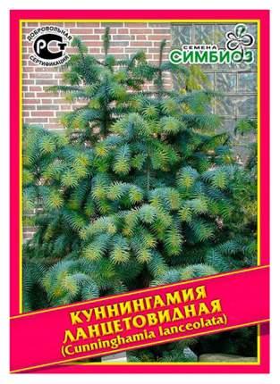 Семена Куннингамия Ланцетовидная, 0,1 г  Симбиоз
