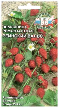 Семена Земляника ремонтантная Рейнский вальс, 0,04 г СеДеК