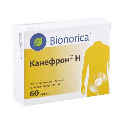 Канефрон H таблетки 60 шт.