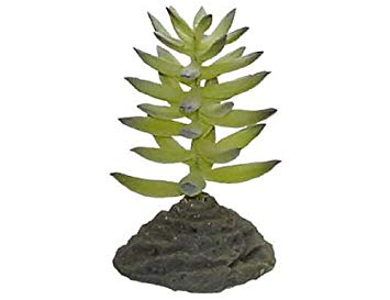 "Декоративное растение LUCKY REPTILE для террариумов ""Bamboo Tufts"""