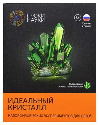 Набор для изготовления кристаллов Трюки науки Идеальный кристалл Z118