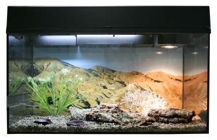 Террариум для рептилий Lucky Reptile Стартовый комплект для Эублефаров, черный, 80x52x40см