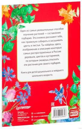 Книга питер Мой первый Гербарий Цветы и листья