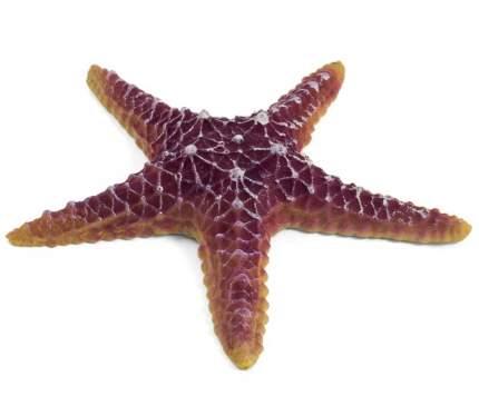 Грот для аквариума Laguna Морская звезда, полиэфирная смола, 16х16х3 см