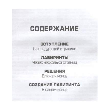 Мастер лабиринтов