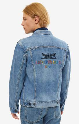 Джинсовая куртка мужская Levi's 7233404090 синяя/разноцветная L