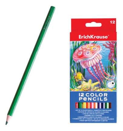 Карандаши цветные Erich Krause 12 сolor pencils