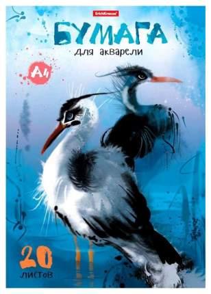 Бумага для акварели А4 20 листов. Птицы жарких стран
