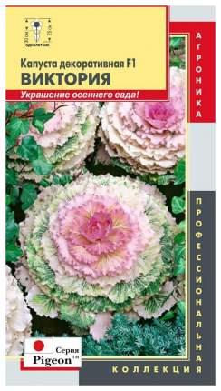 Семена Капуста декоративная Пижон Виктория F1, 5 шт, Плазмас