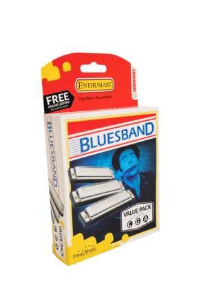 Губная гармоника диатоническая HOHNER Blues Band CGA