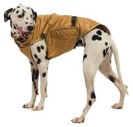 Попона для собак ТУЗИК размер 6XL унисекс, коричневый, длина спины 70 см