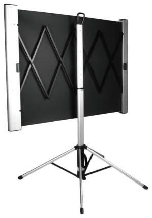 Экран для видеопроектора Cactus TriAlExpert CS-PSTALE-180X102