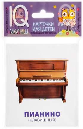 Набор карточек для Детей Айрис-Пресс Iq Малыш Умный Малыш Музыкальные Инструменты