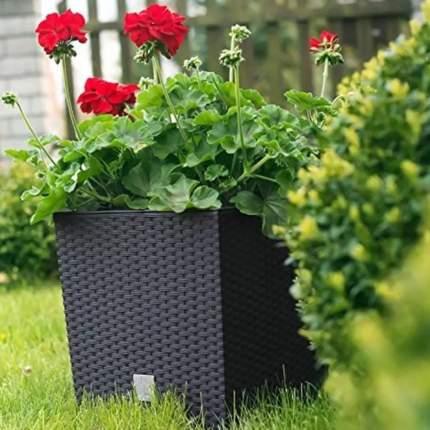 Prosperplast Кашпо с контейнером РОТАНГ квадрат, 22,5 см темно-коричневый
