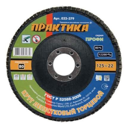 Диск лепестковый для угловых шлифмашин Практика 032-379
