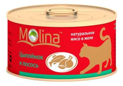 Консервы для кошек Molina, с цыпленком и лососем в желе, 80г