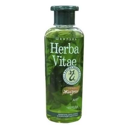 Шампунь для собак Herba Vitae Травы жизни для короткошерстных, аир и череда, 250 мл