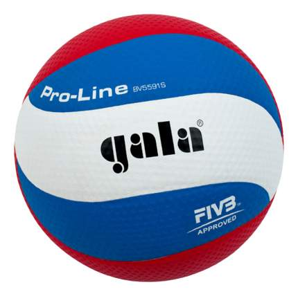 Волейбольный мяч Gala BV5591S Размер 5