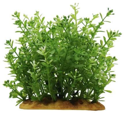 Искусственное растение ArtUniq Rotala 15