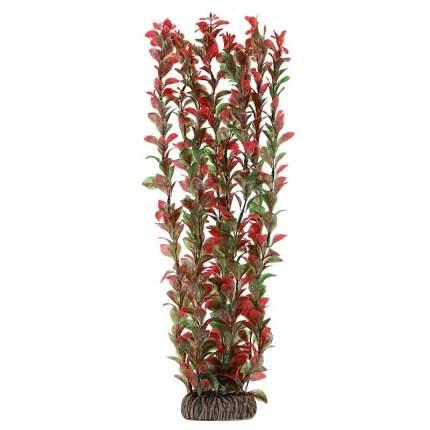 Растение для аквариума Laguna Людвигия вариегата, 46 см