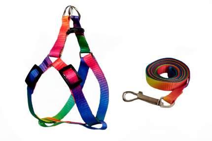 Шлейка для животных с поводком Киспис, универсальная, многоцветная, 130 см