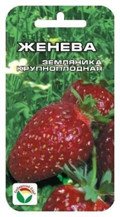 Семена Клубника крупноплодная Женева, 10 шт, Сибирский сад