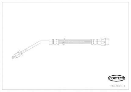 Шланг тормозной CORTECO 19036601