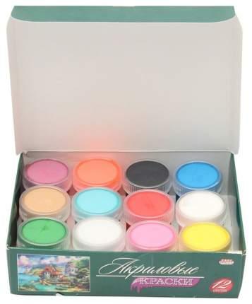Акриловые краски Проф-Пресс 12 цветов