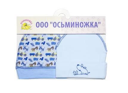 Шапка для мальчиков Осьминожка Ш218-318В-18 голубой р.18
