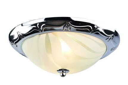 Потолочный светильник Arte Lamp 28 A3008PL-2CC