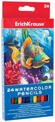 Карандаши цветные Erich Krause Акварельные 24 цвета
