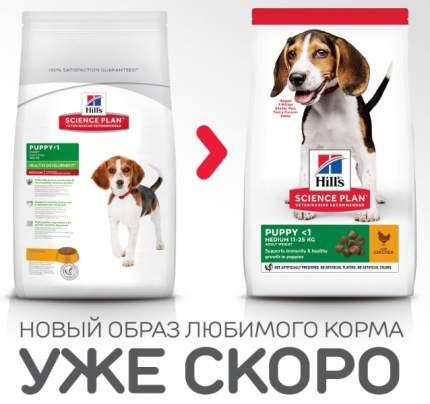 Сухой корм для щенков Hill's Science Plan Puppy Healthy Development Medium, курица, 12кг