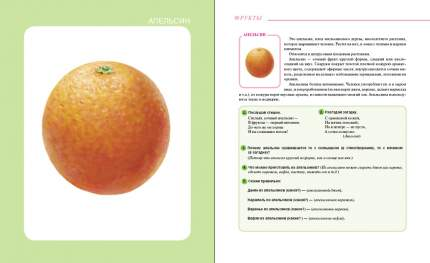 Фрукты. Овощи. Тематический словарь в картинках: Мир растений и грибов