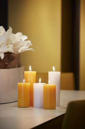 Свеча SPAAS Яблоко с корицей 15 см