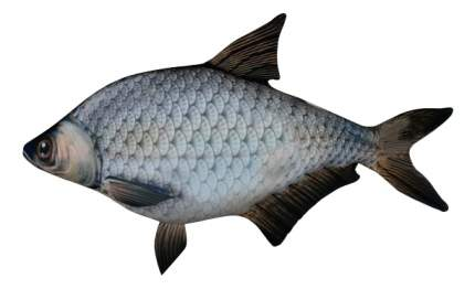 Игрушка-антистресс СПИ Рыба Лещ Большая 15Аси53Ив Спи