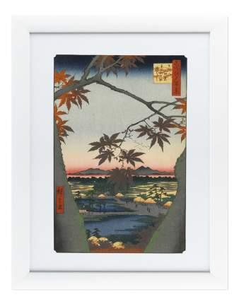 Картина Картины в Квартиру Цветная Гравюра №3 (47х60 см)