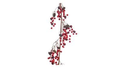 Декоративные ягоды KAEMINGK 622384 120 см