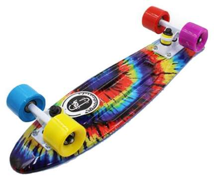 Пенни борд Fish Skateboards Fish Print 56,5 x 15 см радуга